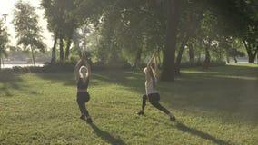 La yoga que hace de dos mujeres jovenes en parque cerca del río durante mañana, llamarada de la lente y fondo de la hermosa vista almacen de video