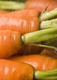 La zanahoria Imagenes de archivo