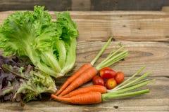 La zanahoria y el tomate frescos Fotografía de archivo
