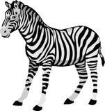 La zebra nera bianca della striscia royalty illustrazione gratis