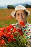 la zone fleurit le femme d'aîné de pavot de cueillette Photos libres de droits