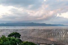 La zone intertidale côtière photographie stock