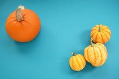 La zucca arancio e la zucca gialla sull'alzavola hanno dipinto il legno Immagini Stock Libere da Diritti