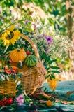 La zucca del giardino del raccolto di autunno del canestro di caduta fruttifica fiore variopinto fotografie stock libere da diritti
