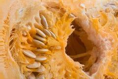 La zucca del taglio Immagini Stock