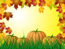 La zucca di Copyspace mostra lo scherzetto o dolcetto e l'autunno Immagine Stock