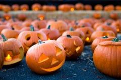 La zucca di Halloween con il fronte sorridente ha scolpito in  Immagini Stock