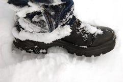 Laars in sneeuw Stock Afbeeldingen