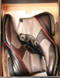 Laarzen in doos Royalty-vrije Stock Foto's