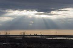 Laat bij nacht Zonsondergang en sunrises Rivier die over het gebied met bezinningen in het water lopen Gelijk makend met donkerbl stock afbeeldingen
