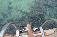 Laat in het overzees zwemmen Stock Fotografie