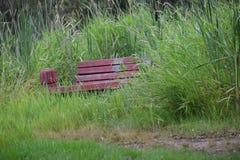 Laat niet Gras het groeien onder uw voeten Stock Foto
