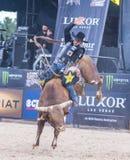Laatste Cowboy Standing Royalty-vrije Stock Afbeelding