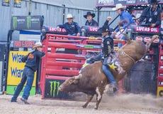 Laatste Cowboy Standing Stock Fotografie