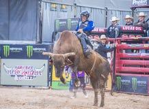 Laatste Cowboy Standing Stock Afbeelding