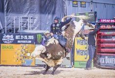 Laatste Cowboy Standing Royalty-vrije Stock Foto