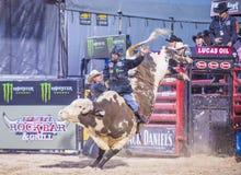 Laatste Cowboy Standing Stock Foto's