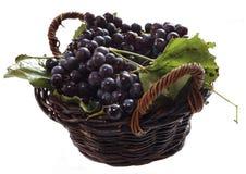 Laatste druiven Royalty-vrije Stock Foto's