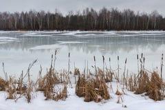Laatste ijs Het eind van de winter, het begin van de lente Landschap met smeltend ijs en riet bij de kust in de vroege lente of r Stock Afbeeldingen
