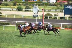 Laatste jockey en paard in het ras die naar de afwerkingslijn lopen stock afbeeldingen