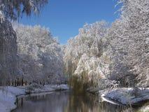 Laatste sneeuw in de lente stock afbeelding