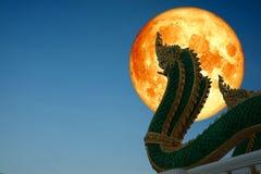 laatste volle maan van de winter terug op silhouet Naga bij boeddhistische tempel op nachthemel royalty-vrije stock foto's