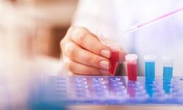 Lab. Analysis array assay automation bacterium biochemistry Stock Photos