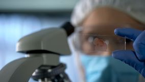 Lab assistant looking at microscope slide with blood, genetic research, closeup stock images