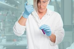 Lab assistant in work Stock Photography