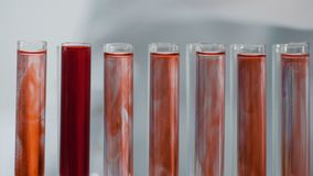Lab assistant working with test tubes, examining blood samples in laboratory. Stock footage stock video
