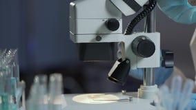 Lab asystent egzamininuje próbkę krwi, kalkulatorskich erytrocyty i leukocytes, zbiory