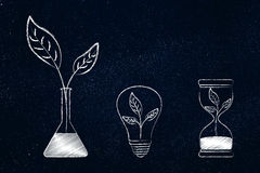 Lab bottle, lightbulb and hourglass with leaves inside Stock Images