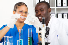 Lab experiment. Two african american lab technicians doing experiment in lab Stock Image