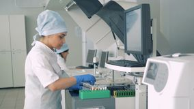 Lab expert is filling a palette with test tubes in pharmacology, pharmaceutical plant.