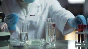 Lab naukowiec robi badaniu próbki krwi ustalać genetyczne choroby zbiory wideo