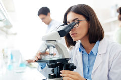 Lab research Royalty Free Stock Photos