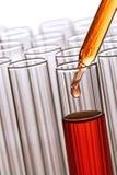 lab research science test tubes Стоковые Фотографии RF