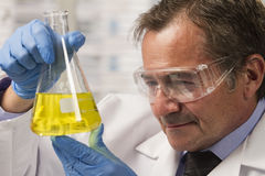 Lab scientist examining beaker, horizontal Royalty Free Stock Photography