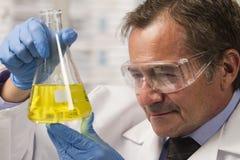 Lab scientist examining beaker, horizontal Royalty Free Stock Photography