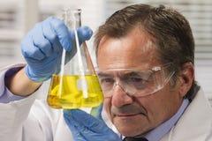 Lab scientist examining beaker, horizontal Stock Image