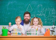 In lab. Small girls holding test tubes in school laboratory. Little pupils and teacher doing laboratory research stock image