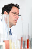 Lab technician Royalty Free Stock Image