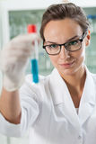 Lab technician analyzing result of experiment Stock Photography