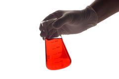 Lab technician holding a Erlenmeyer royalty free stock image