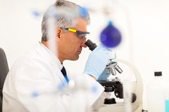 Lab technician microscope Stock Photo