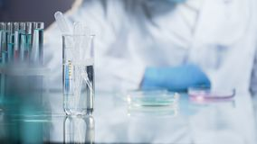 Lab technician observing reaction of mixture in glass, scientific research. Stock video Stock Images
