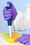 Lab technician taking samples Royalty Free Stock Image