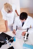 Lab technicians at work in a laboratory. Two lab technicians at work in a laboratory Stock Photography