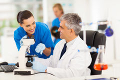 Lab technicians working Royalty Free Stock Photos