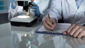 Lab worker filling paper forms, his assistant viewing samples under microscope royalty free stock photos